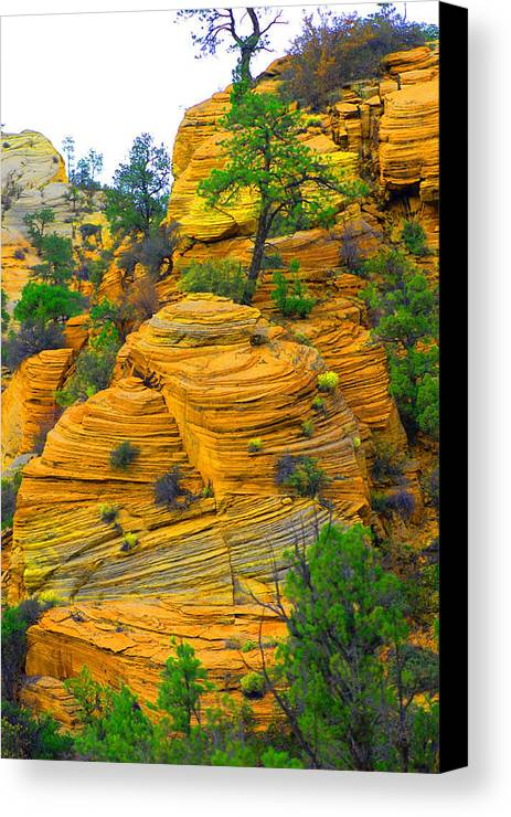Utah Canvas Print featuring the photograph Weathered Rock by Dennis Hammer