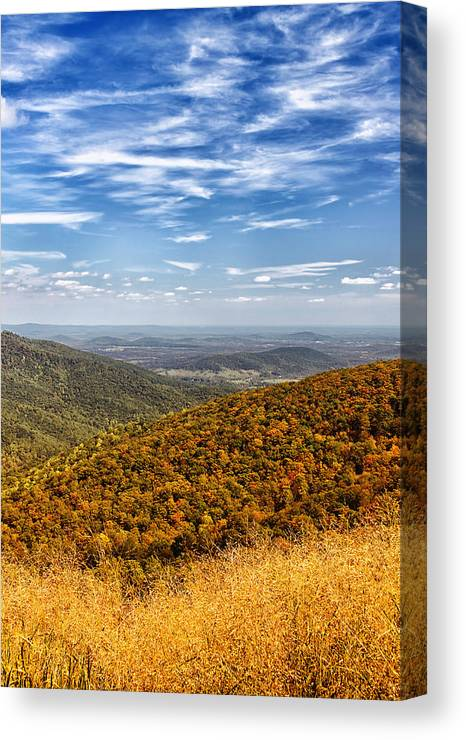 Autumn Canvas Print featuring the photograph Autumn Layers by Kim Hojnacki