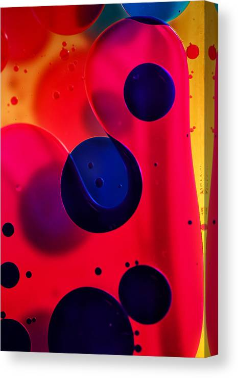 Oil Canvas Print featuring the photograph Birthday by Kent Mathiesen