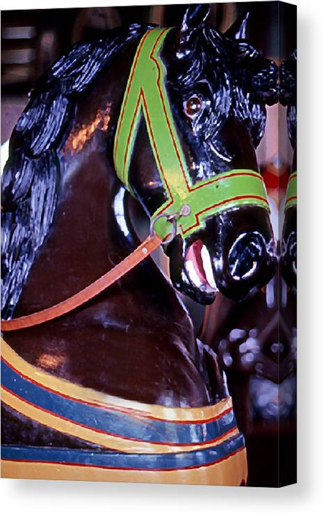Still Life Canvas Print featuring the photograph Carousel by Michael Fenton