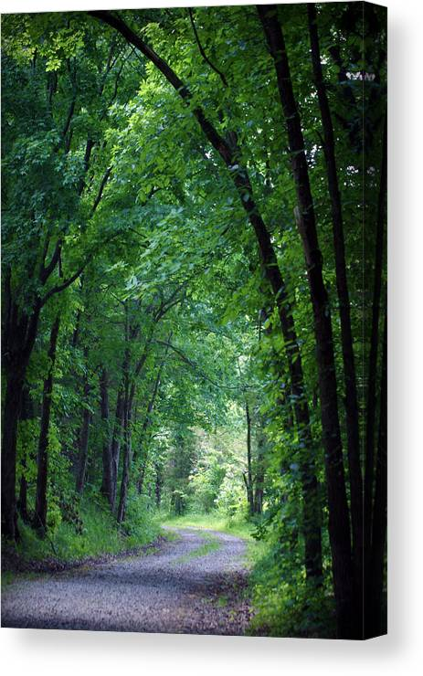 Tree Canvas Print featuring the photograph Country Lane by Cricket Hackmann