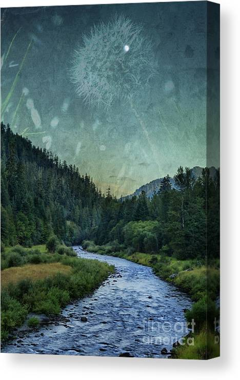 River Canvas Print featuring the photograph Dandelion Moon by Belinda Greb