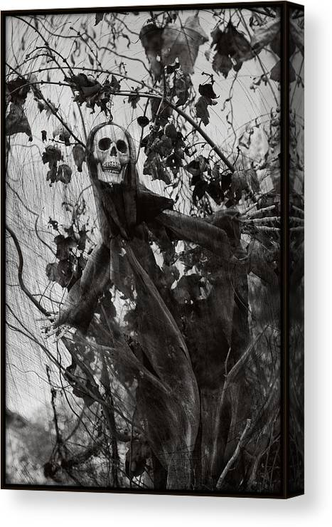 Halloween Canvas Print featuring the photograph Here I Am by Nick Difi