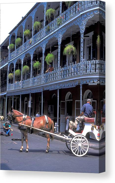 Horse Canvas Print featuring the photograph Horse And Carriage In New Orleans by Carl Purcell