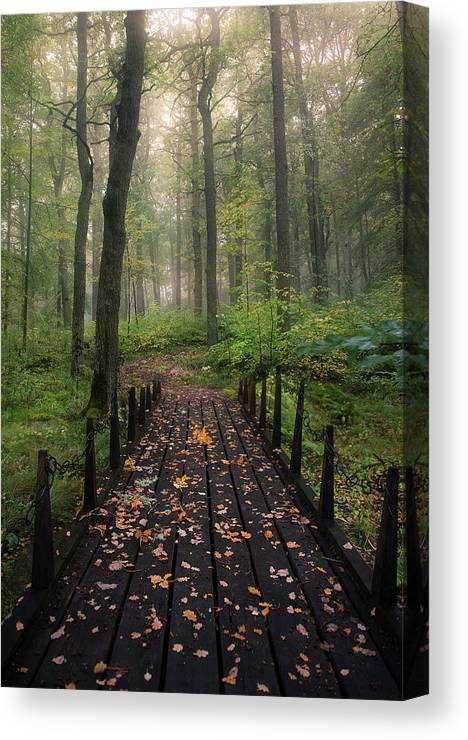 Vanishing Point Canvas Print featuring the photograph Misty Morning by Christian Lindsten