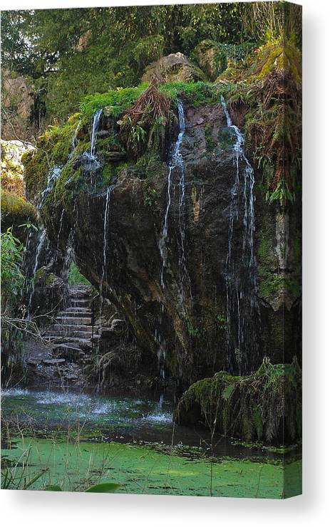 Waterfall Canvas Print featuring the photograph Mystic Waterfall by Herb Kreutzer
