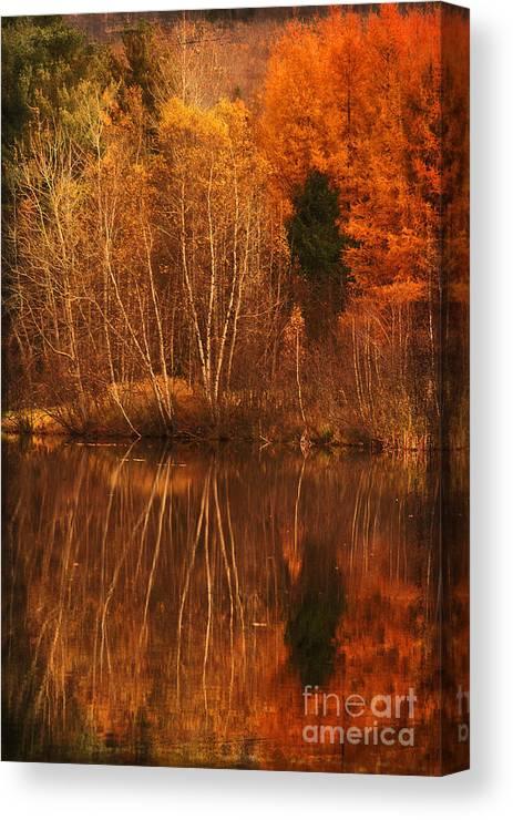 Autumn Canvas Print featuring the photograph Restes D'automne by Aimelle