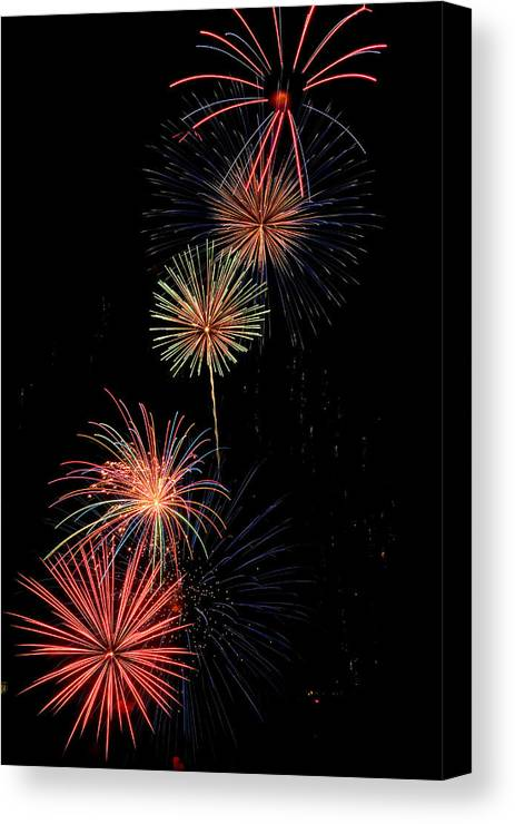 Fireworks Canvas Print featuring the photograph Row Of Flowers by Devinder Sangha