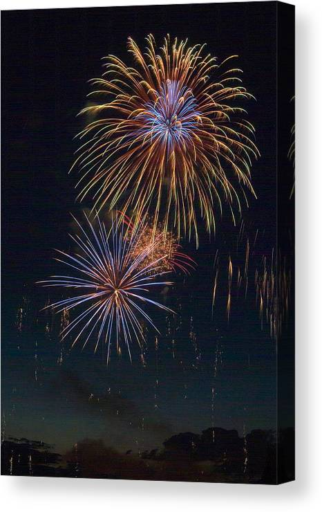 Fireworks Canvas Print featuring the photograph Sky Flowers by Devinder Sangha