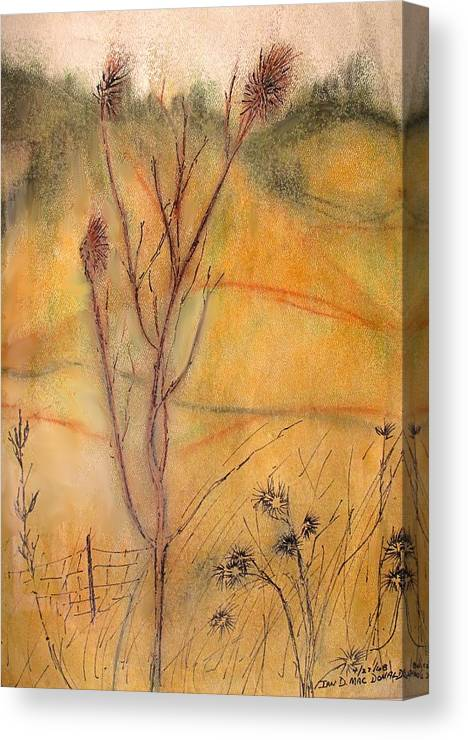 Spring Canvas Print featuring the drawing Spring Fields by Ian MacDonald