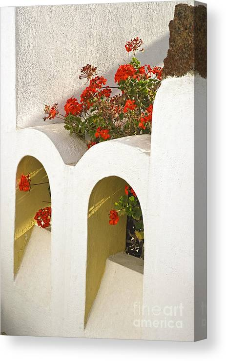 Greece Canvas Print featuring the photograph Wall With Red Flowers by Barry Fawcett