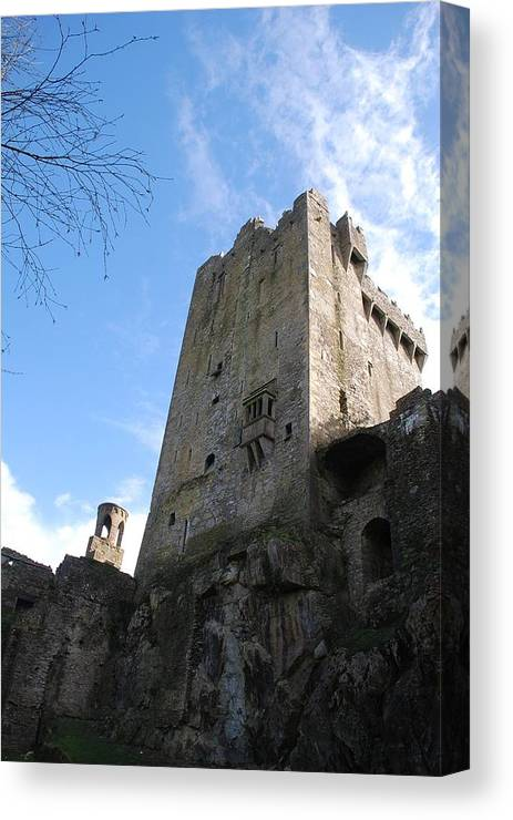 Castle Canvas Print featuring the photograph Watch Tower by Cindy Kreutzer