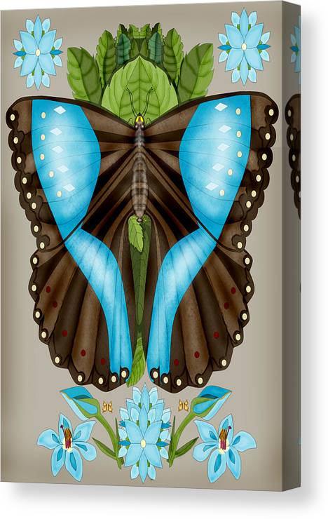 Anne Norskog Hand-drawn Original Digital Art Canvas Print featuring the painting Blue Tiled Butterfly by Anne Norskog