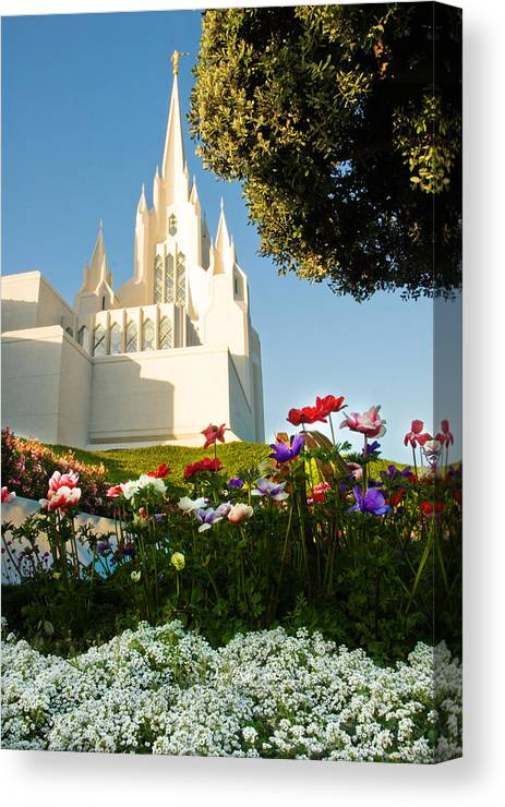 Lds Temple Photography Canvas Print featuring the photograph San Diego Flowers by La Rae Roberts