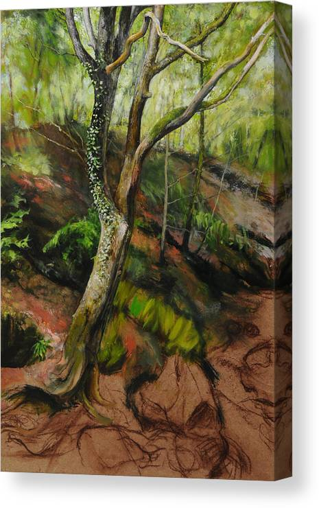 Landscape Canvas Print featuring the painting Sketch Of A Treetrunk by Harry Robertson