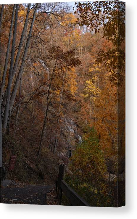 Fall Color Photo Canvas Print featuring the photograph Fall At Amicalola Falls by Gregory Colvin