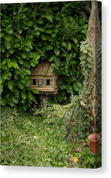 Hide Canvas Print featuring the photograph Hidden Birdhouse by Cindy Johnston