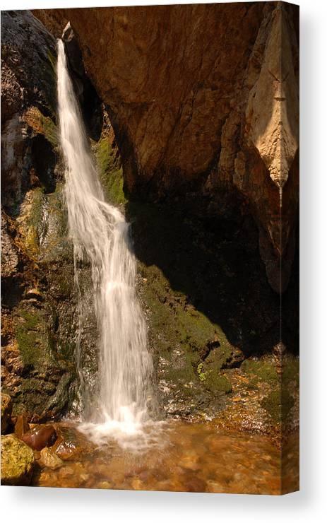 Waterfall Canvas Print featuring the photograph Hidden Falls by Dennis Hammer