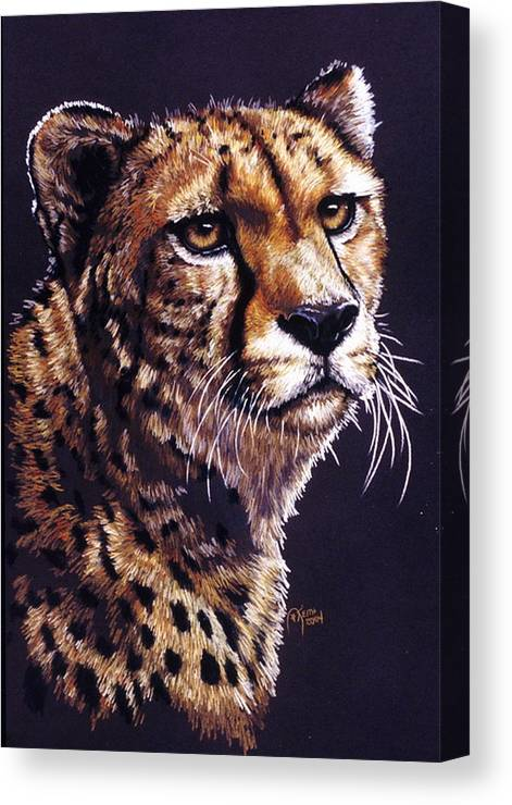 Cheetah Canvas Print featuring the drawing Movin On by Barbara Keith