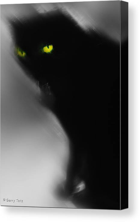 Romeo Canvas Print featuring the photograph Romeo 1 by Gerry Tetz
