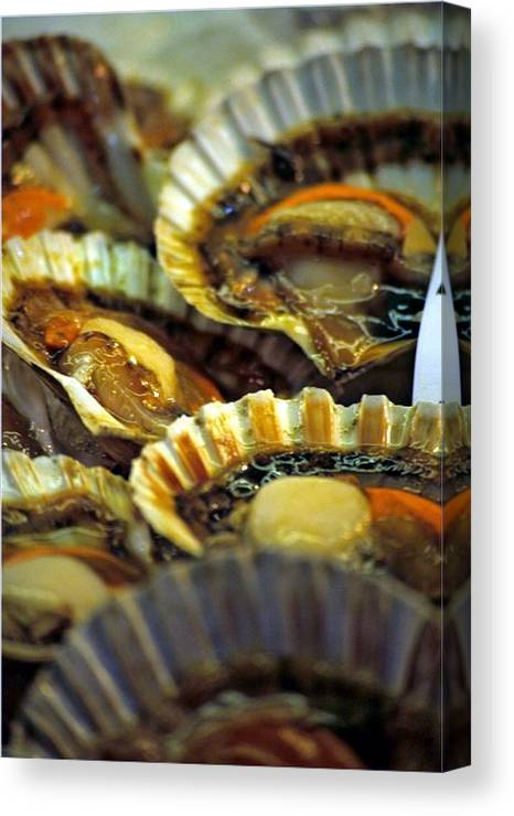 Venice Canvas Print featuring the photograph Scallops At Rialto Market In Venice by Michael Henderson