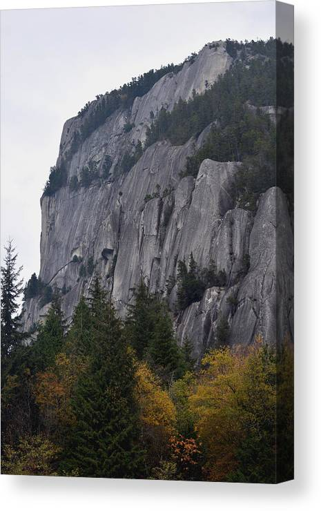Stawamus Chief Canvas Print featuring the photograph Standing Tall by Richard Andrews