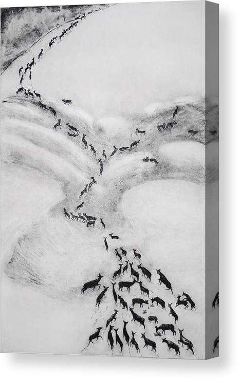 Deer Canvas Print featuring the drawing The Terrible Winter - Migration by Dawn Senior-Trask