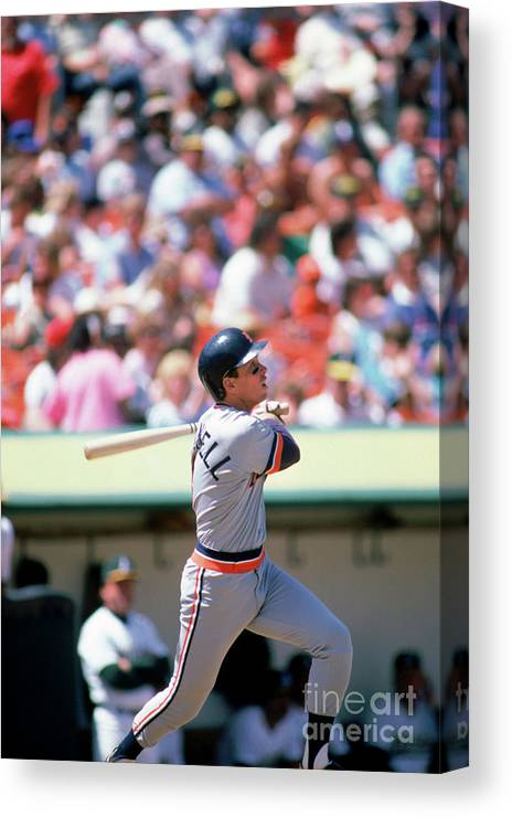 Following Canvas Print featuring the photograph Alan Trammell by Michael Zagaris