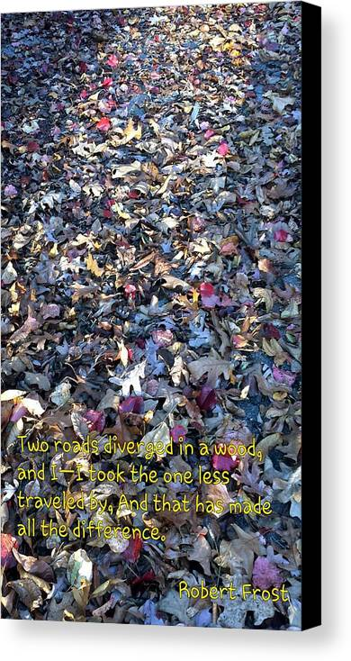 Life's Path Canvas Print featuring the photograph Road Less Taken by Kenny Glover