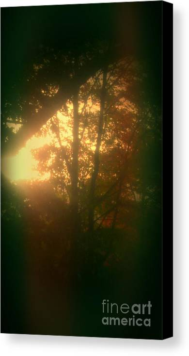 Autumn Sunsets Canvas Print featuring the photograph Autumn Sunsets by Marlene Williams