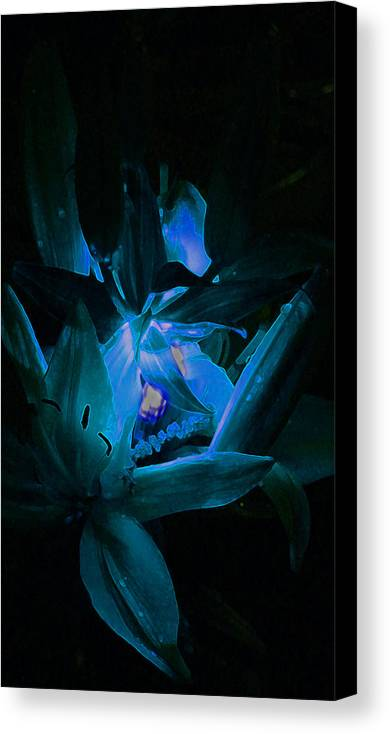 Night Flower Canvas Print featuring the photograph Blu by James Hopkins