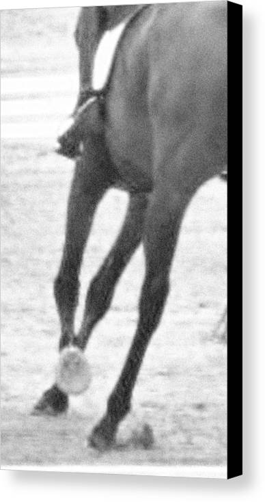 Horse Canvas Print featuring the photograph Nice Lead Change by Donna Thomas
