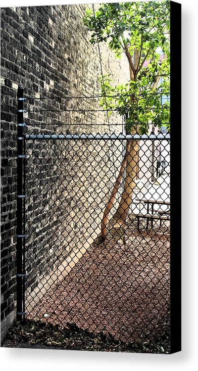 Urban Canvas Print featuring the photograph Urban Park by Gary Everson
