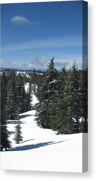 Snowscapes Canvas Print featuring the photograph A Way Out by Lisa Spencer Osterhoudt