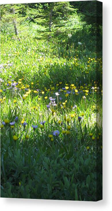 Landscape Canvas Print featuring the photograph High Meadow Flowers by Lisa Spencer Osterhoudt