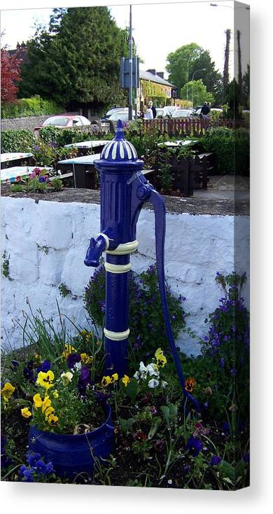Ireland Canvas Print featuring the photograph Waterpump With Flowers by Cathryn Brown