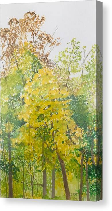 Autumn Canvas Print featuring the painting Backyard by Leah Tomaino