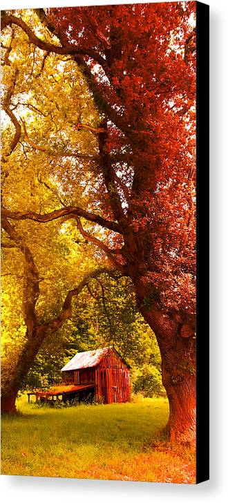 Forest Canvas Print featuring the photograph Cosy Shed by Svetlana Sewell
