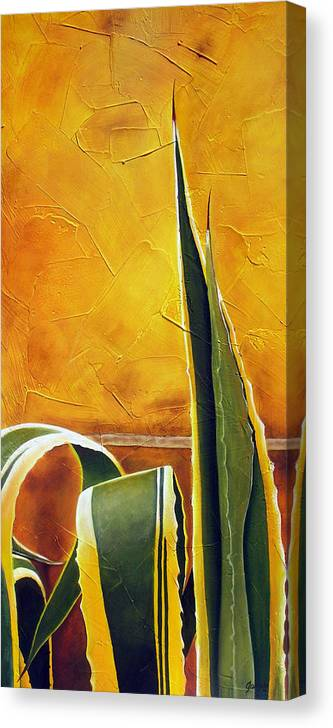 Agave Canvas Print featuring the painting Agave Americana by Maribel Garzon