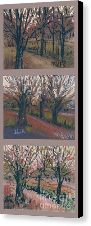 Pastel Canvas Print featuring the drawing Orchard Sunset by Donald Maier
