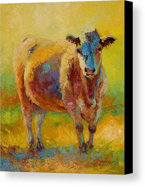 Western Canvas Print featuring the painting Blondie - Cow by Marion Rose