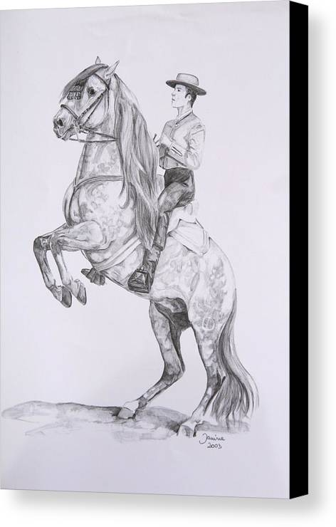 Horse Original Painting Canvas Print featuring the drawing Carlos On Pensador by Janina Suuronen