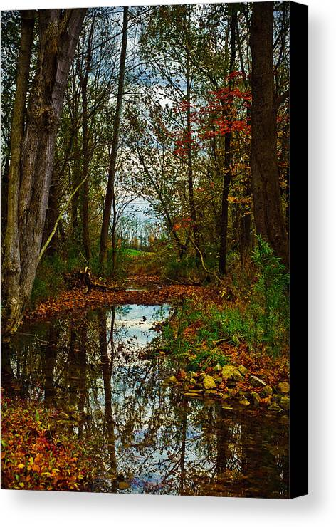 Landscape Canvas Print featuring the photograph Colors Of Fall by Kristi Swift