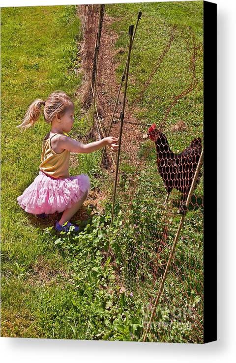 Child Canvas Print featuring the photograph Feeding Time by Valerie Garner