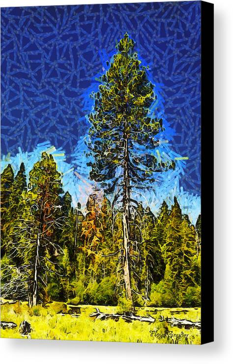 Giant Abstract Tree Canvas Print featuring the photograph Giant Tree Abstract by Barbara Snyder
