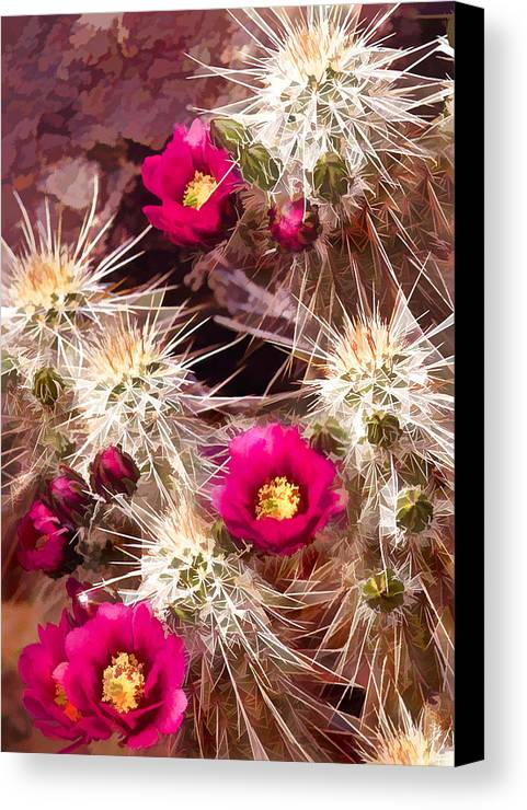 Cactus Canvas Print featuring the painting Prickley Cactus Plants by Elaine Plesser