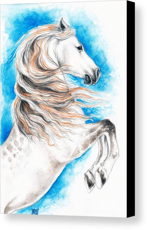Horse Canvas Print featuring the painting Rearing Andalusian Horse by Evey Studios