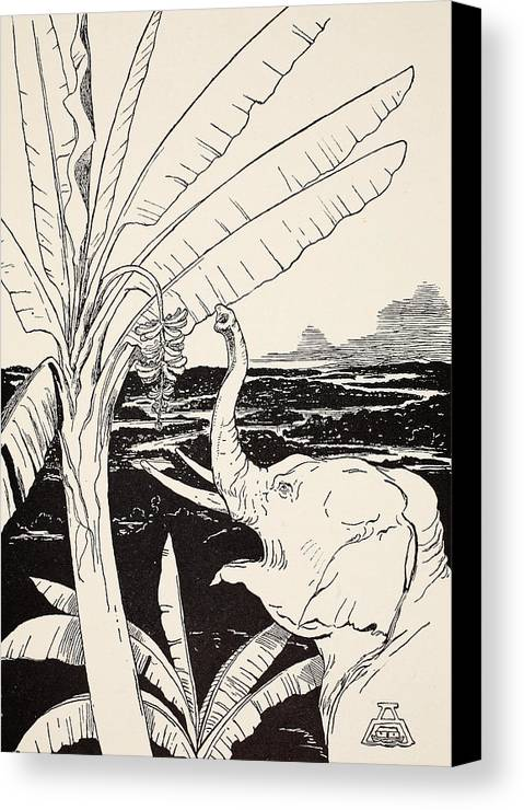 Fruit Canvas Print featuring the drawing The Elephant's Child Going To Pull Bananas Off A Banana-tree by Joseph Rudyard Kipling