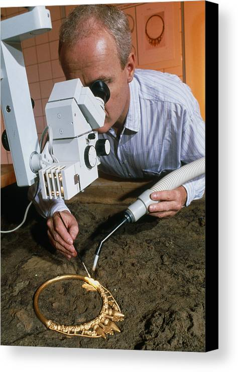 Celtic Necklace Canvas Print featuring the photograph Archaeologist Cleaning A Golden Celtic Necklace by Volker Steger