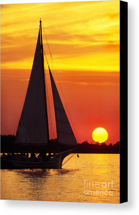 Skipjack Canvas Print featuring the photograph Skipjack At Sunset by Thomas R Fletcher